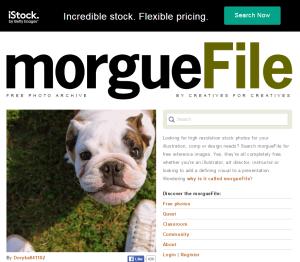 Imagem do website morgue File